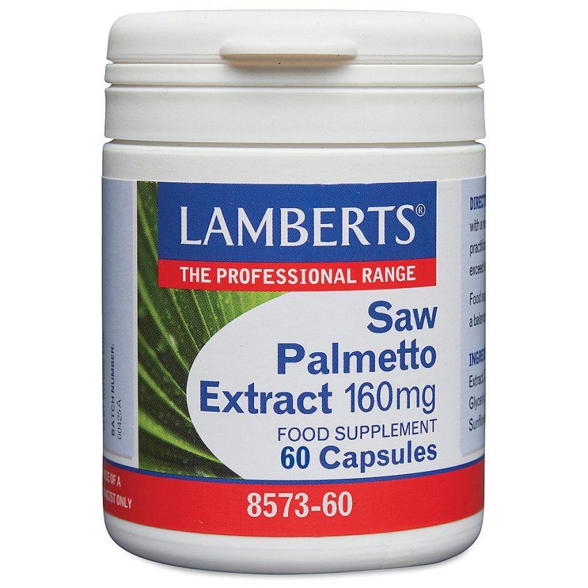 Lamberts Saw Palmetto